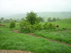 Farmers_field_burial_ground_375